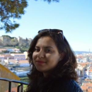Assistente Turistico Per Disabili a Pisa (Pisa)